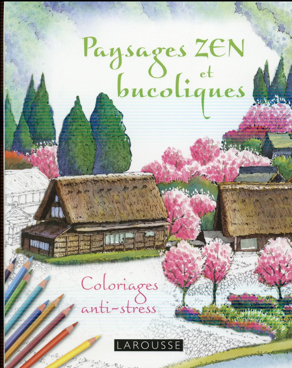 CAHIERS DE COLORIAGES  -  PAYSAGES ZEN ET BUCOLIQUES Monma Tomohisa Larousse