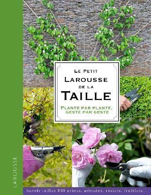 LE PETIT LAROUSSE DE LA TAILLE XXX LAROUSSE