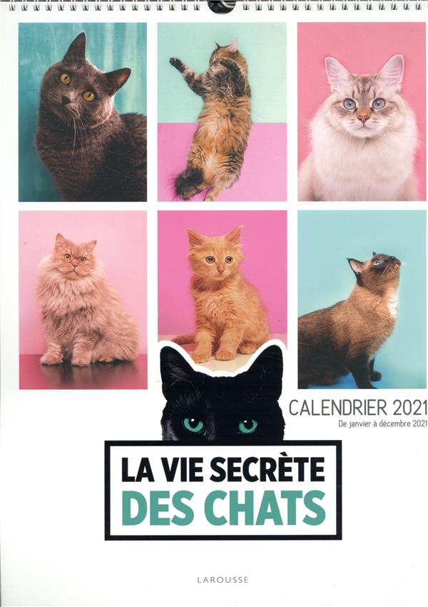 LA VIE SECRETE DES CHATS (EDITION 2021)