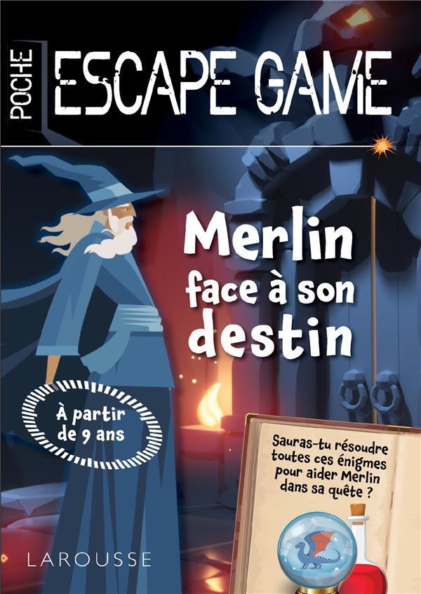 MERLIN FACE A SON DESTIN -