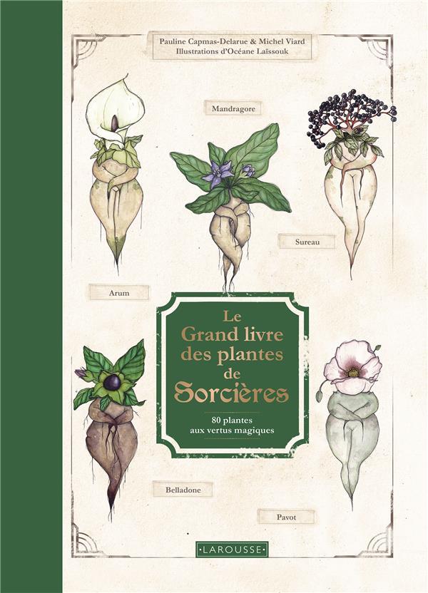 LE GRAND LIVRE DES PLANTES DE SORCIERES : 80 PLANTES AUX VERTUS MAGIQUES
