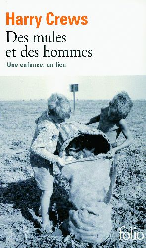 DES MULES ET DES HOMMES