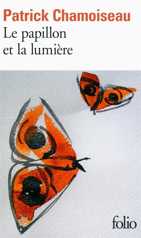 LE PAPILLON ET LA LUMIERE