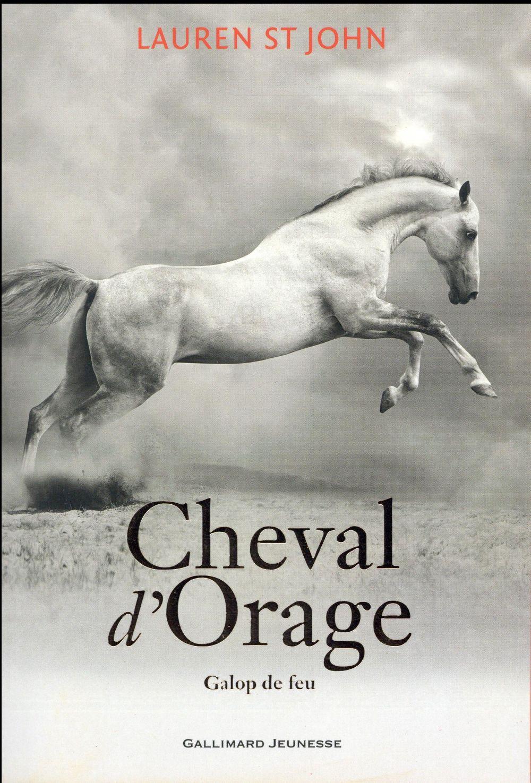 CHEVAL D'ORAGE T3