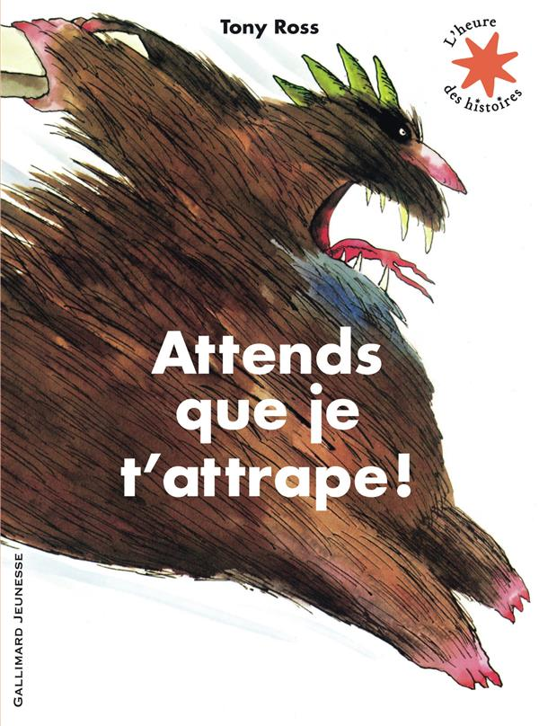 ATTENDS QUE JE T'ATTRAPE ! ROSS TONY Gallimard-Jeunesse