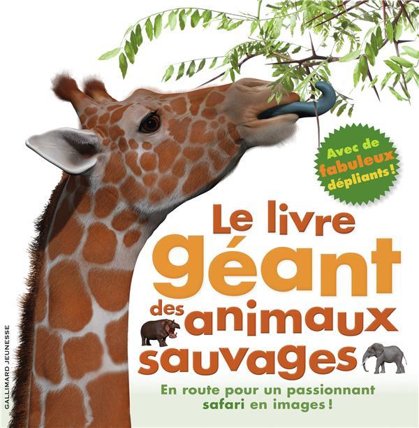 LE LIVRE GEANT DES ANIMAUX GREENWOOD MARY Gallimard-Jeunesse