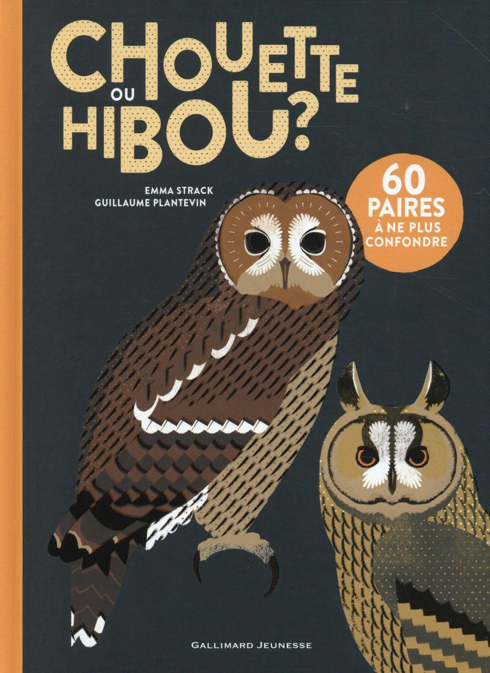 CHOUETTE OU HIBOU ? STRACK/PLANTEVIN Gallimard-Jeunesse