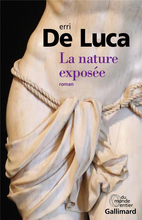 LA NATURE EXPOSEE DE LUCA ERRI GALLIMARD