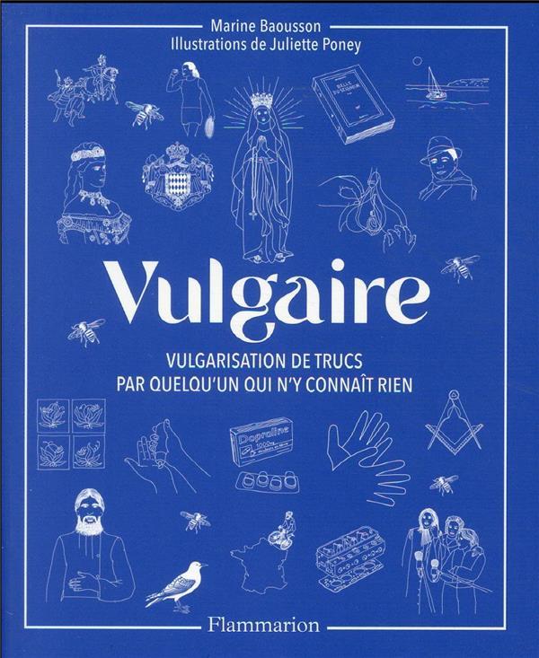 VULGAIRE - VULGARISATION DE TRUCS PAR QUELQU'UN QUI N'Y CONNAIT RIEN BAOUSSON/PONEY FLAMMARION