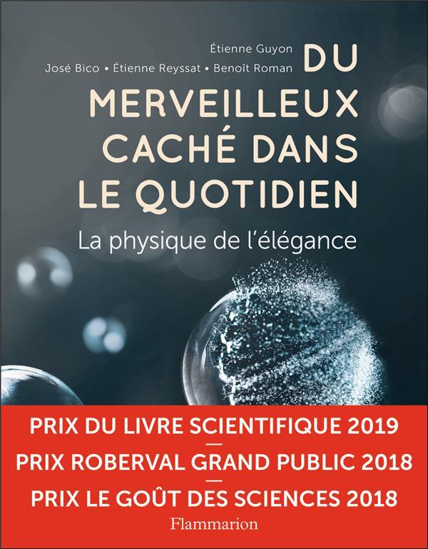 DU MERVEILLEUX CACHE DANS LE QUOTIDIEN  -  LA PHYSIQUE DE L'ELEGANCE COLLECTIF/GUYON FLAMMARION