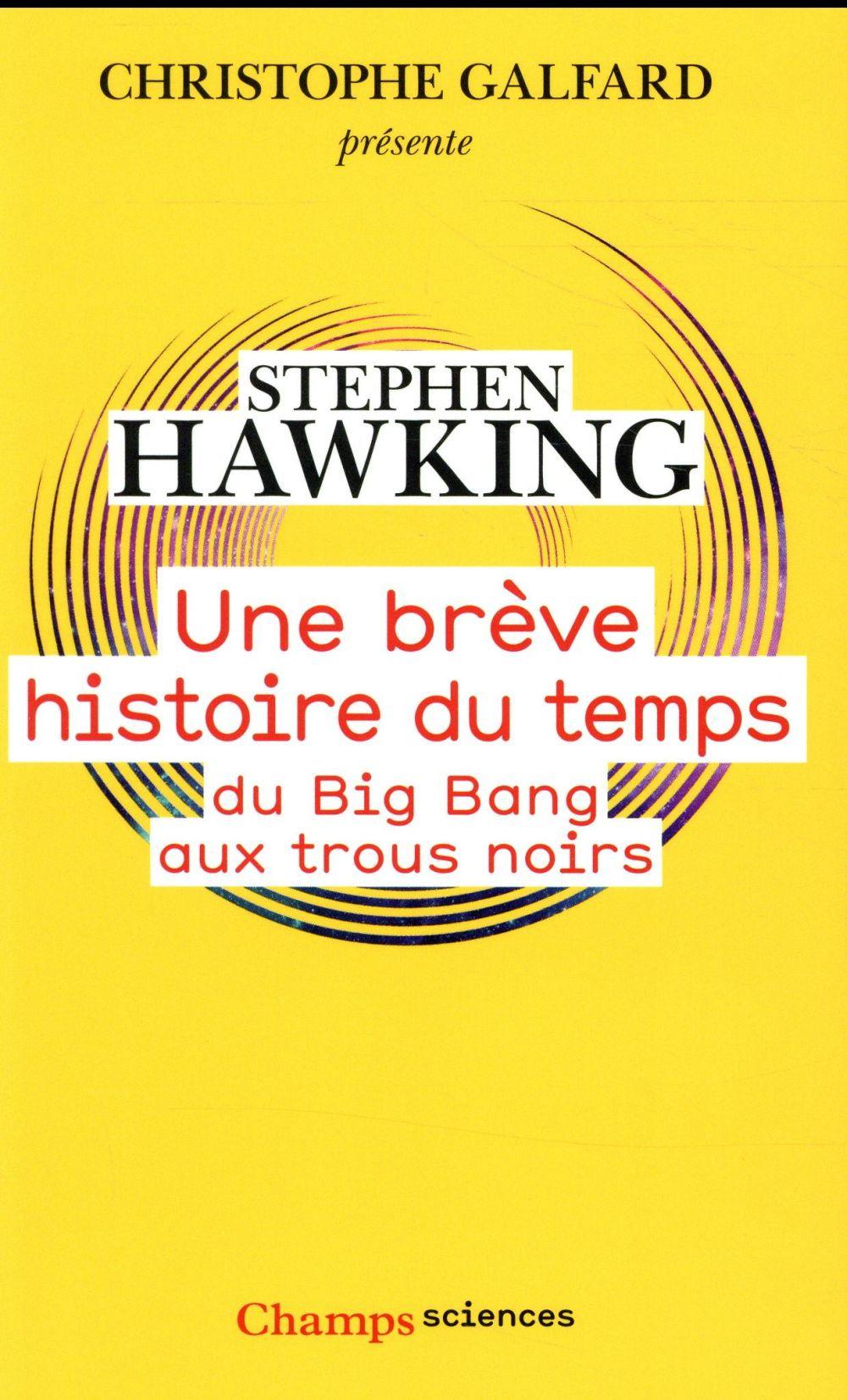 UNE BREVE HISTOIRE DU TEMPS  -  DU BIG BANG AUX TROUS NOIRS HAWKING STEPHEN Flammarion