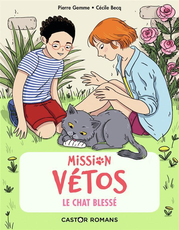 MISSION VETOS T.5     LE CHAT BLESSE