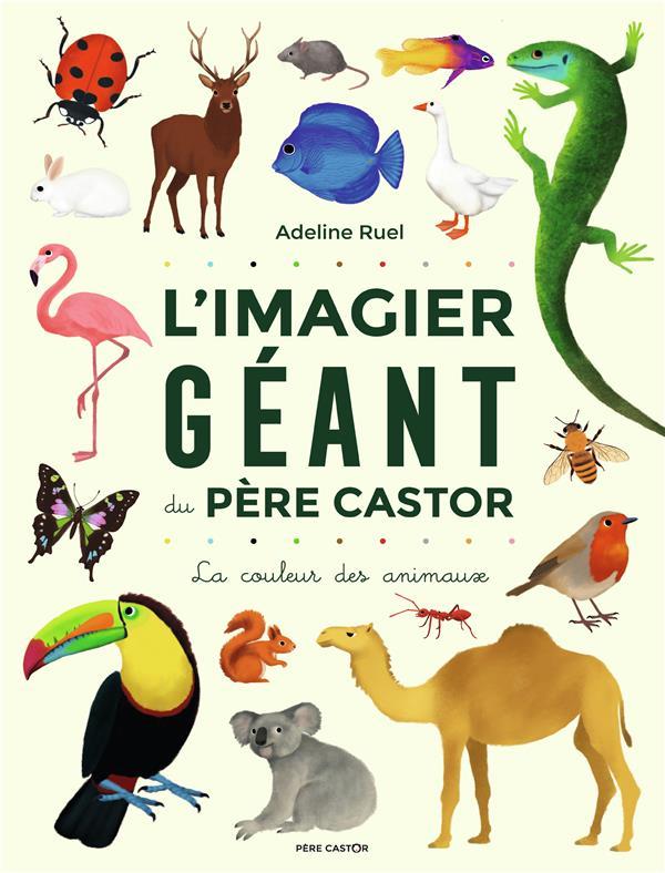 L'IMAGIER GEANT DU PERE CASTOR     LA COULEUR DES ANIMAUX