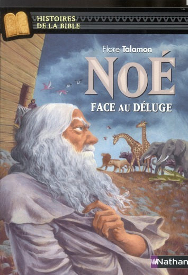 NOE FACE AU DELUGE