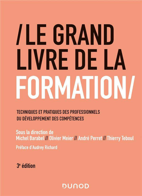 LE GRAND LIVRE DE LA FORMATION - 3E ED. - TECHNIQUES ET PRATIQUES DES PROFESSIONNELS DU DEVELOPPEMEN BARABEL/MEIER/PERRET DUNOD