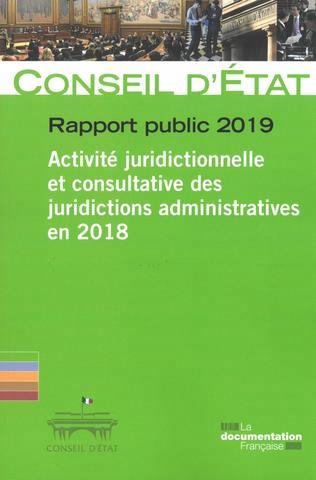 RAPPORT PUBLIC 2019