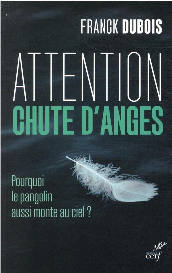 ATTENTION CHUTE D'ANGES : POURQUOI LE PANGOLIN AUSSI MONTE AU CIEL ?