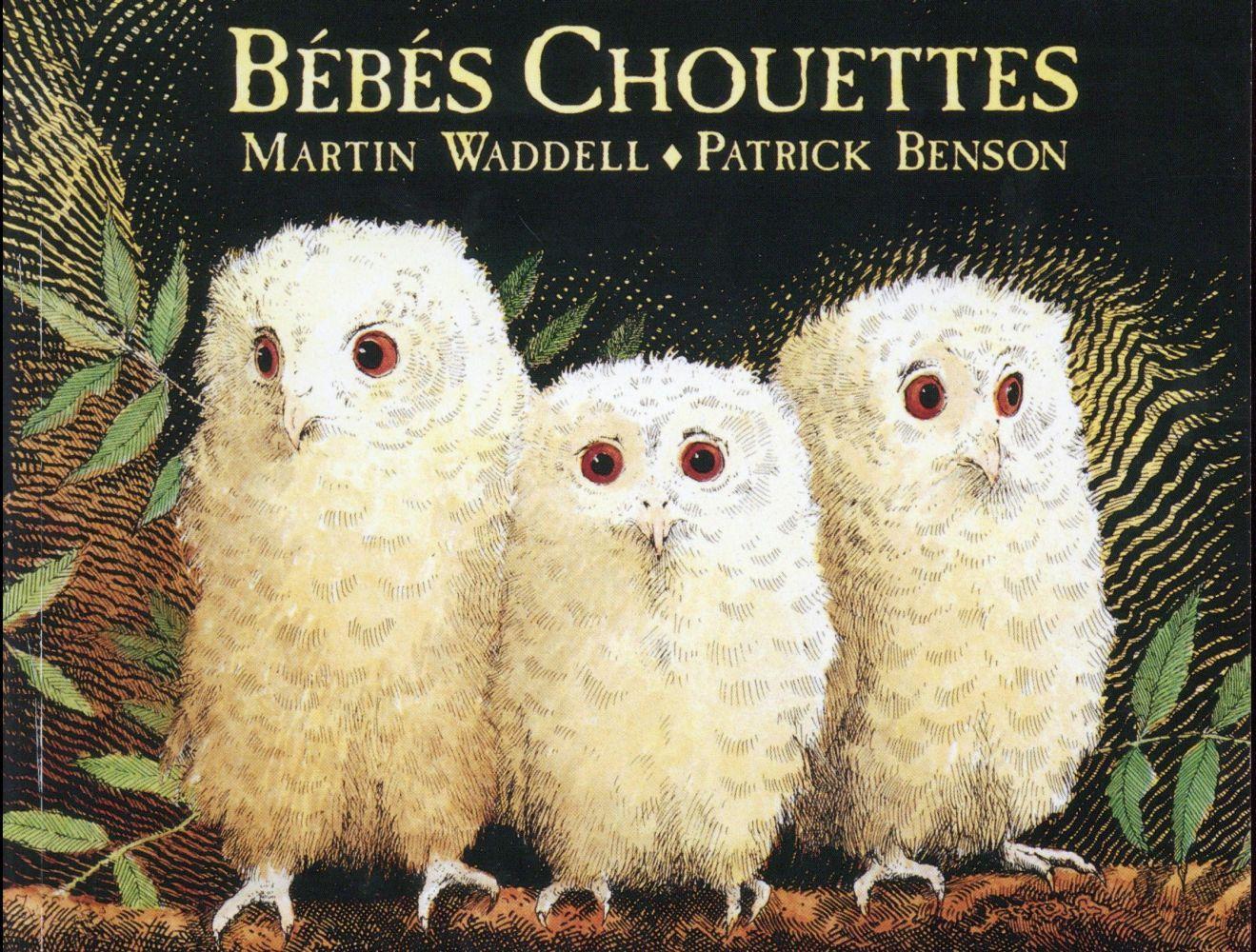 BEBES CHOUETTES WADDELL/BENSON EDL