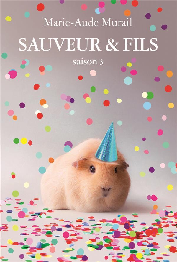 SAUVEUR & FILS SAISON 3 GRAND FORMAT