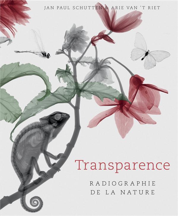 TRANSPARENCE  -  RADIOGRAPHIE DE LA NATURE