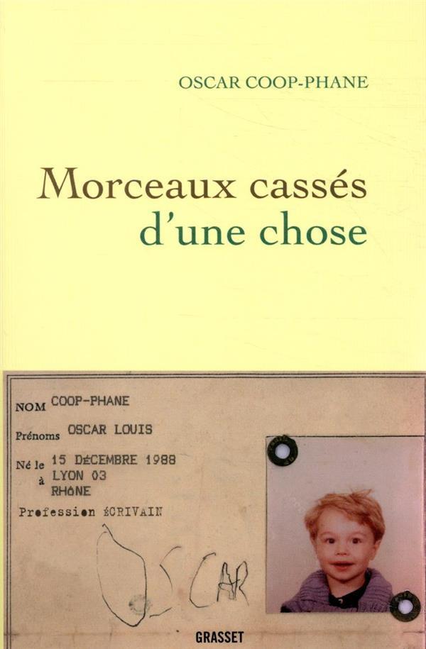 MORCEAUX CASSES D'UNE CHOSE