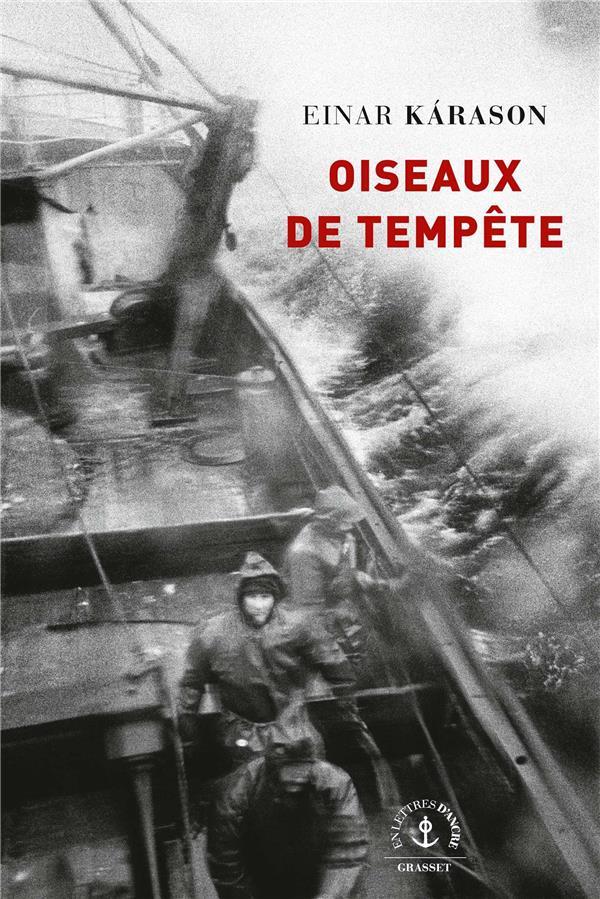 OISEAUX DE TEMPETE