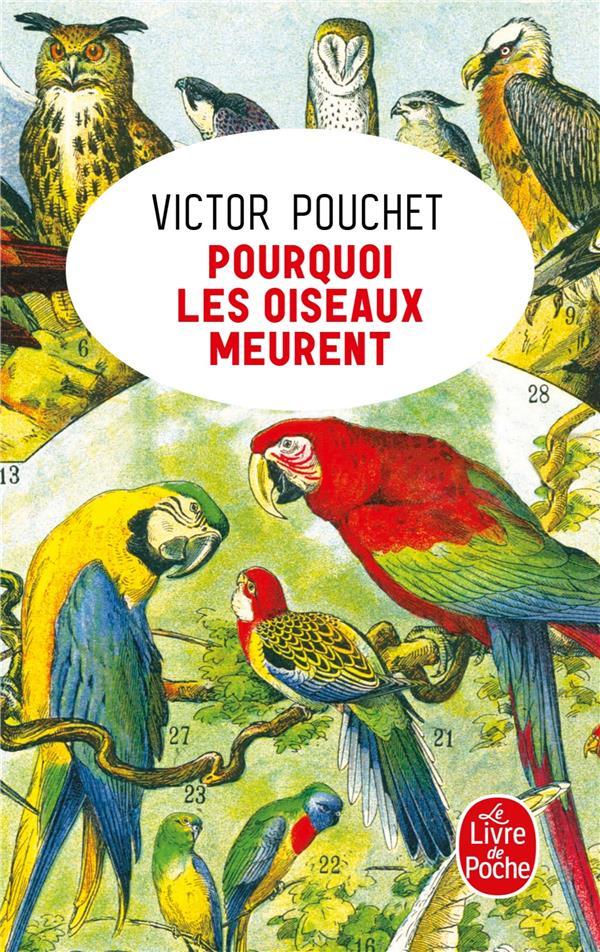 POURQUOI LES OISEAUX MEURENT POUCHET VICTOR LGF