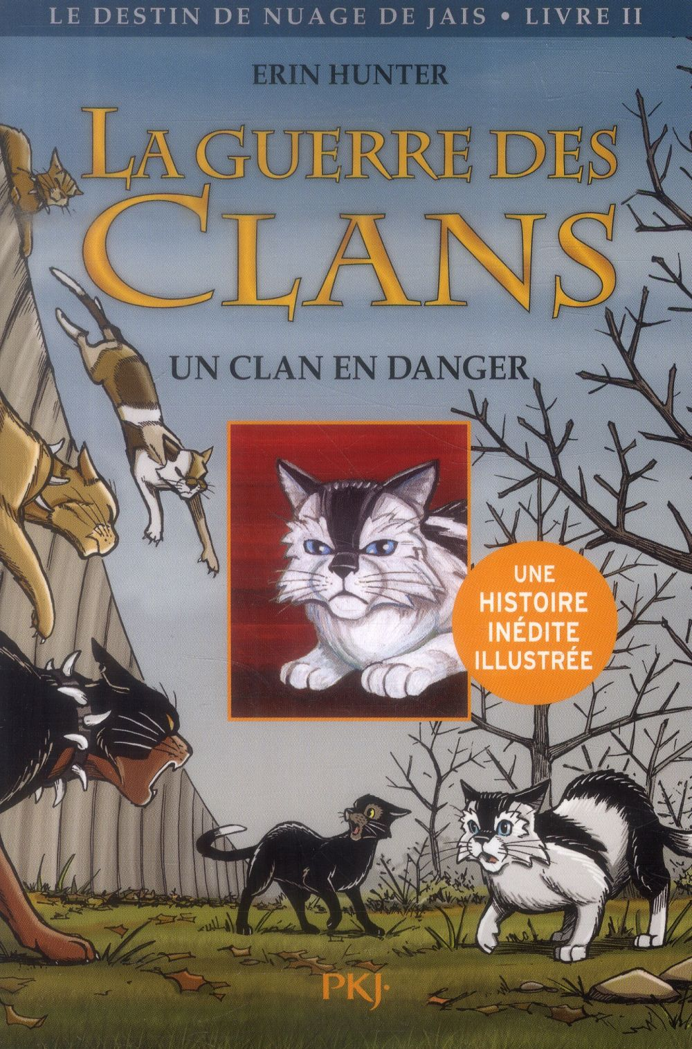 LA GUERRE DES CLANS - LE DESTIN DE NUAGE DE JAIS T.2  -  UN CLAN EN DANGER Barry James L. Pocket jeunesse