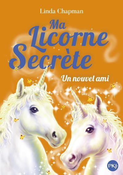 MA LICORNE SECRETE T.6  -  UN NOUVEL AMI