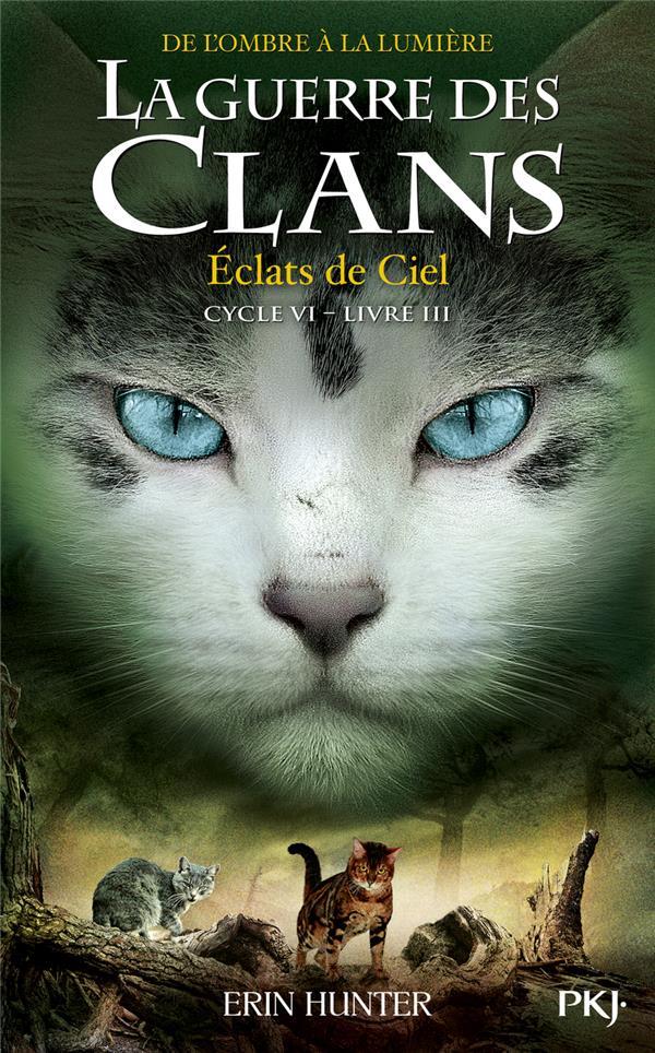 LA GUERRE DES CLANS - CYCLE 6  -  DE L'OMBRE A LA LUMIERE T.3  -  ECLATS DE CIEL HUNTER ERIN POCKET