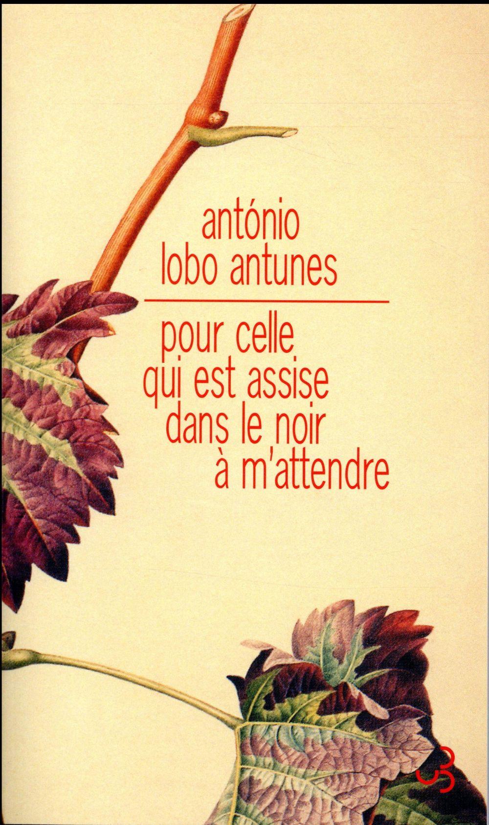 POUR CELLE QUI EST ASSISE DANS LOBO ANTUNES ANTONIO BOURGOIS