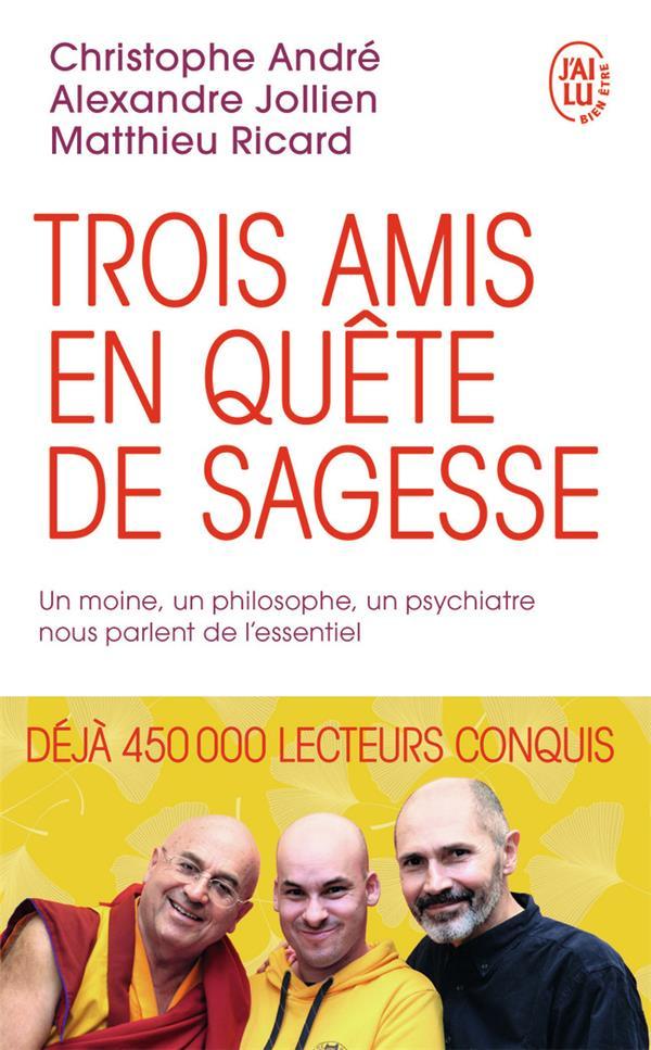 TROIS AMIS EN QUETE DE SAGESSE - UN MOINE, UN PHILOSOPHE, UN PSYCHIATRE NOUS PARLENT DE L'ESSENTIEL JOLLIEN/ANDRE/RICARD J'AI LU