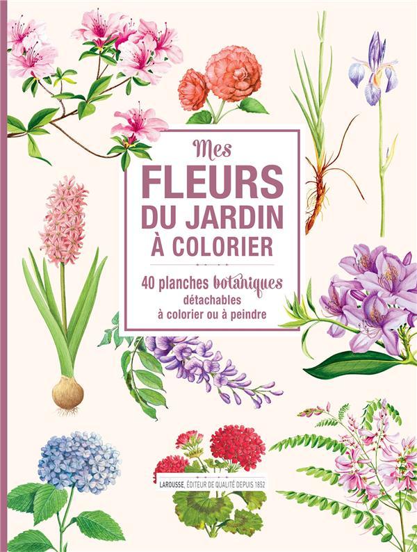 MES FLEURS DU JARDIN A COLORIER : 40 PLANCHES BOTANIQUES DETACHABLES A COLORIER OU A PEINDRE XXX NC