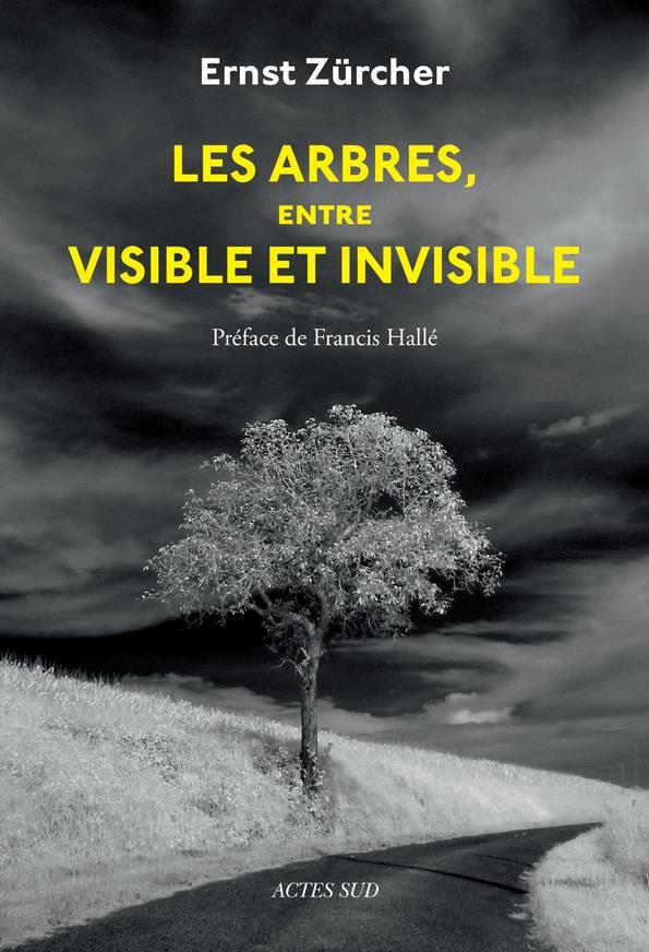 LES ARBRES, ENTRE VISIBLE ET INVISIBLE  -  S'ETONNER, COMPRENDRE, AGIR ZURCHER/HALLE/SIRVEN Actes Sud