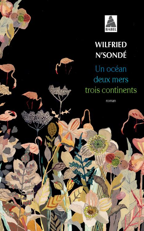 UN OCEAN, DEUX MERS, TROIS CONTINENTS N-SONDE WILFRIED ACTES SUD