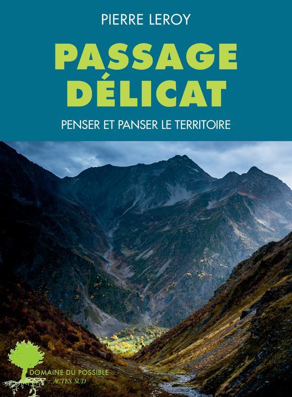 PASSAGES DELICATS : PENSER ET PANSER LE TERRITOIRE LEROY PIERRE ACTES SUD