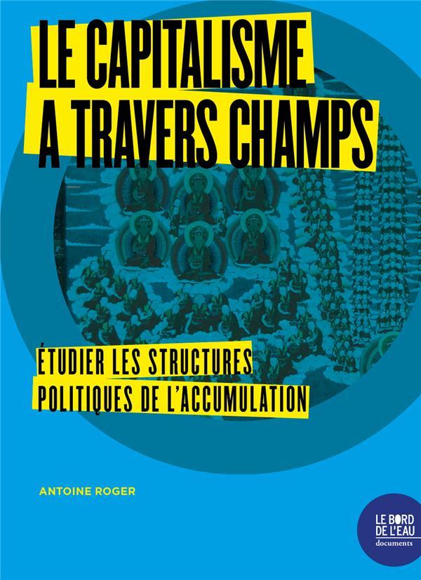 LE CAPITALISME A TRAVERS CHAMPS     ETUDIER LES STRUCTURES