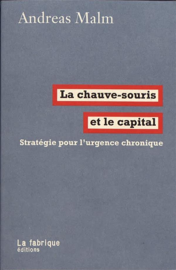 LA CHAUVE-SOURIS ET LE CAPITAL  -  STRATEGIE POUR L'URGENCE CHRONIQUE