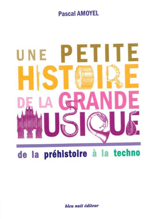 UNE PETITE HISTOIRE DE LA GRANDE MUSIQUE  -  DE LA PREHISTOIRE A LA TECHNO AMOYEL/BIOJOUT BLEU NUIT