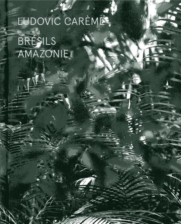 BRESILS  -  AMAZONIE