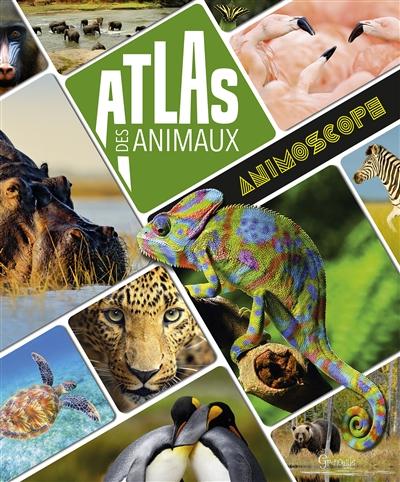 ATLAS DES ANIMAUX  GRENOUILLE