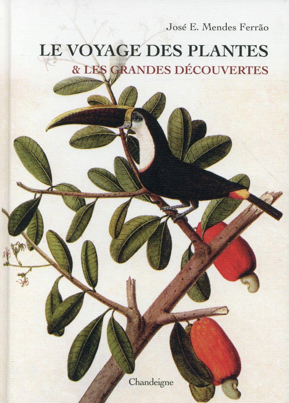 VOYAGE DES PLANTES ET LES GRANDES DECOUVERT ES (LE)