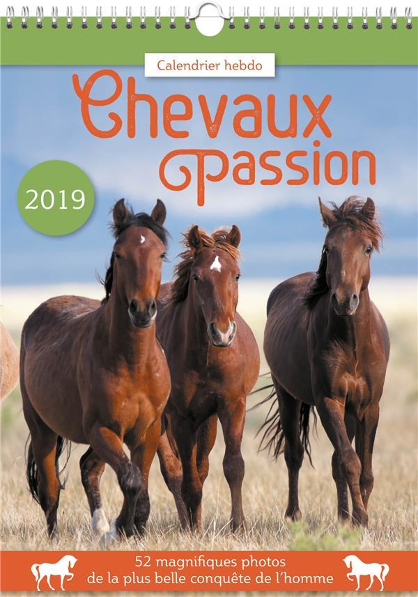 CALENDRIER HEBDO CHEVAUX PASSION 2019  Lgdj