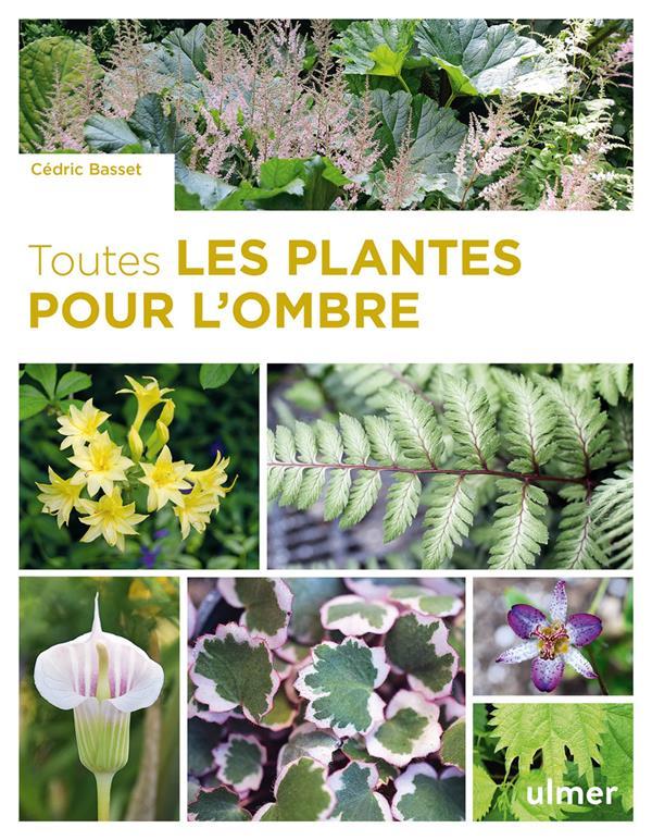 TOUTES LES PLANTES POUR L'OMBRE BASSET, CEDRIC ULMER