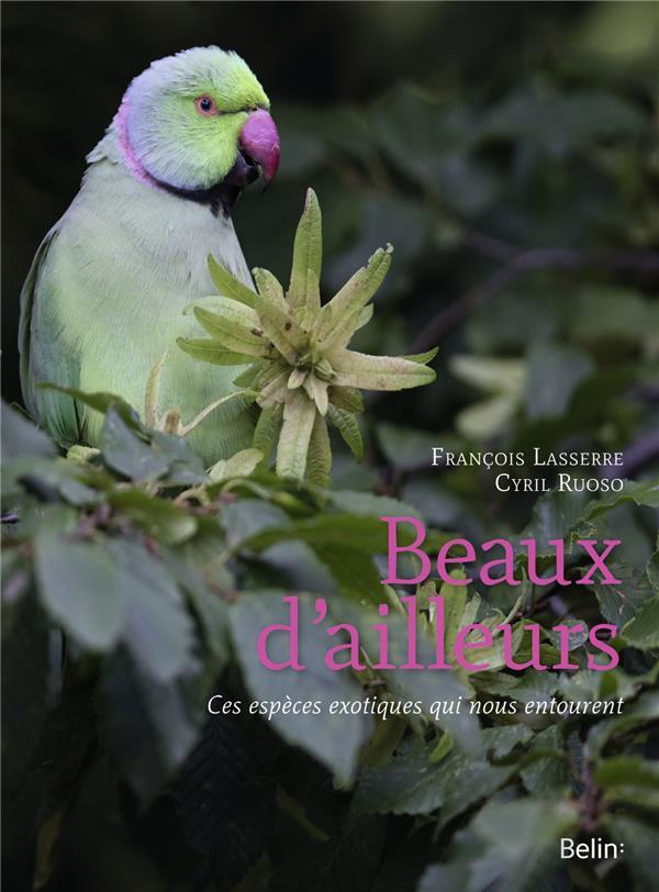 BEAUX D'AILLEURS  -  CES ESPECES EXOTIQUES QUI NOUS ENTOURENT