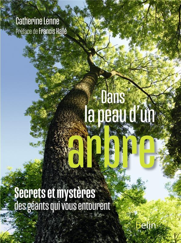 DANS LA PEAU D'UN ARBRE  -  SECRETS ET MYSTERES DES GEANTS QUI VOUS ENTOURENT LENNE, CATHERINE DORLING KINDERS