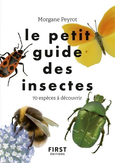 LE PETIT GUIDE DES INSECTES PEYROT/HERZOG FIRST