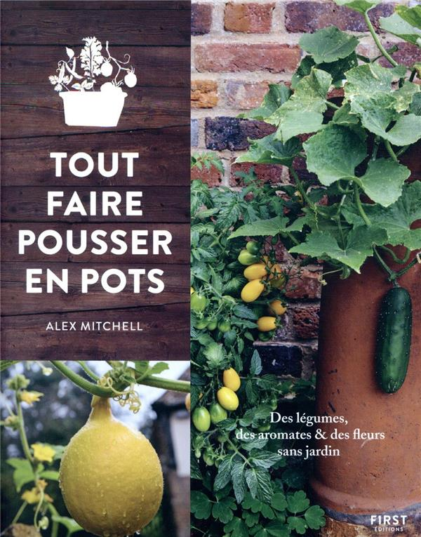 https://webservice-livre.tmic-ellipses.com/couverture/9782412054086.jpg MITCHEL ALEX FIRST