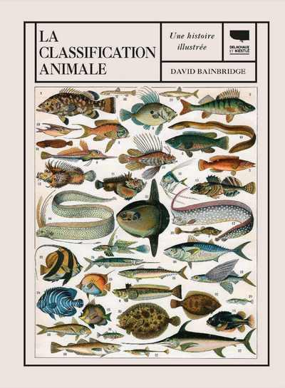 LA CLASSIFICATION ANIMALE  -  UNE HISTOIRE ILLUSTREE
