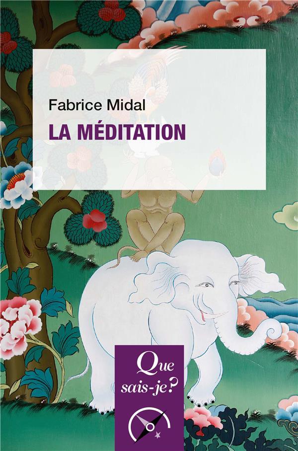 LA MEDITATION MIDAL FABRICE QUE SAIS JE